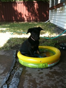 Lizzie in her baby pool